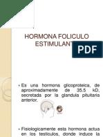 Hormona Foliculo Estimulante Terminado