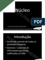 nucleo_2011_2