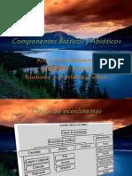 Componentes Bióticos y Abióticos