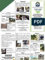 Experiencias de trabajo ambiental en el Colegio nacional Callao