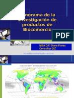 Diana Flores - Panorama Investigación