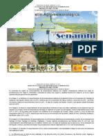 Boletín Agrometeorológico Mensual Nro. 3 para el cultivo de Quinua en la ecoregión Altiplnao Centro y Sur-Noviembre 2011