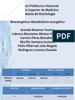 Metabolismo energetico (1)