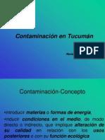 Contaminacion - Agroecologia