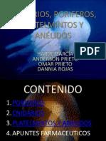PRESENTACION CNIDARIOS, PORIFEROS,  PLATELMINTOS Y ANÉLIDOS