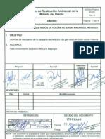 Informe_CNEA-PRAMU