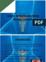 Cáncer laríngeo y pacientes laringectomizado