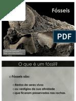 3-Fósseis