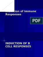 Induction of Immune Responses