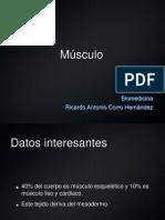 Músculo Histología