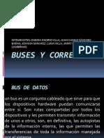 Buses y Correas Redes