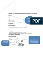 Metabolismo Nitrogenado APUNTES