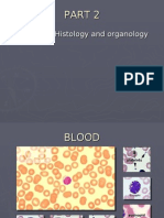 Activity Post Lab_ Animal Histology and Organology_part 2