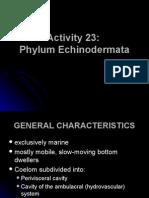 Activity 23_Phylum Echinoderm at A