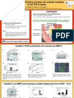 Final ISTH Poster 18.7.11