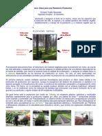 vivero_clave_plantacion[1]
