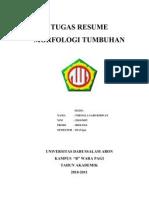 Resume Morfologi Tumbuhan