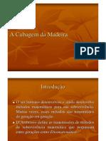 Cubagem de Madeira