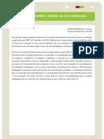 FT Reflexoes Sobre Ensino Eco-Conducao