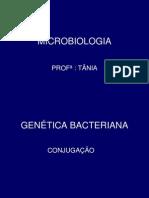 GENETICA BACTERIANA
