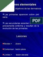 2- Lesiones elementales