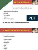 Plan Operativo Piloto Del Ajo