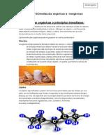Funciones de las moléculas orgánicas e inorgánicas