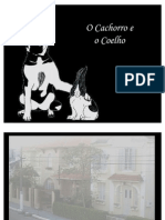 Ocachorroeocoelho-(comsom)