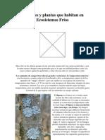 Animales y plantas que habitan en Ecosistemas Fríos