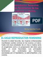 El Ciclo Re Product Or Femenino EXPO 9 de OMIEMBRE