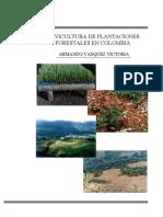 silvicultura colombia