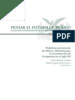 Problemas Psicosociales de Mexico Libro