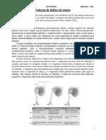 Fraturas da Diáfise do Úmero - Resumo Ortopedia Medicina