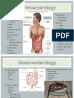Physiology Presentation Ch. 3, 4, 5