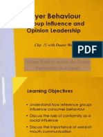 Marketing 260 Buyer Behaviour - Group Influence and Opiion Leadership - Chp 11