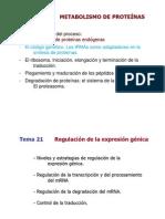 Bioquimica temas 20 y 21
