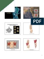 Biomecanica de Columna Lumbar [Modo de ad