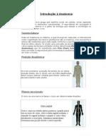 apostila - 1 - Introdução à Anatomia