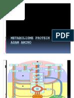Metabolisme Asam Amino-13 [Compatibility Mode]