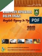 Bengkalis Dalam Angka 2010