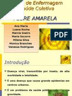 Seminário_Febre Amarela