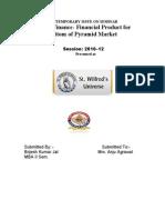 Brijesh Kumar Jat - Micro Finance- Financial Product for Bottom of Pyramid Market