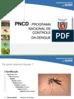 DengueAula