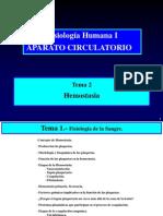 CIRCULATORIO Tema2