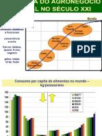 A Dinâmica do Agronegócio no Século XXI Palestra Pioner 2010