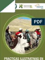 Buenas Practicas Produccion Alpacas Avsf Peru 2010[1]