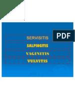 Servsitis Vaginitis Salpingitis Vulvitis
