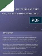 Perception_ Industrial Psychology