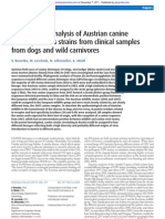 Phylogenetic Analysis of Austrian Canine Distemper Virus From Clinical Samples From Dogs and Wild Carnivores