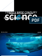 Classification - Whales